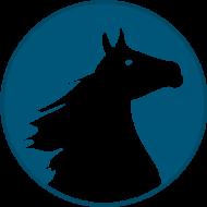SLiP – Software Libero Pinerolo